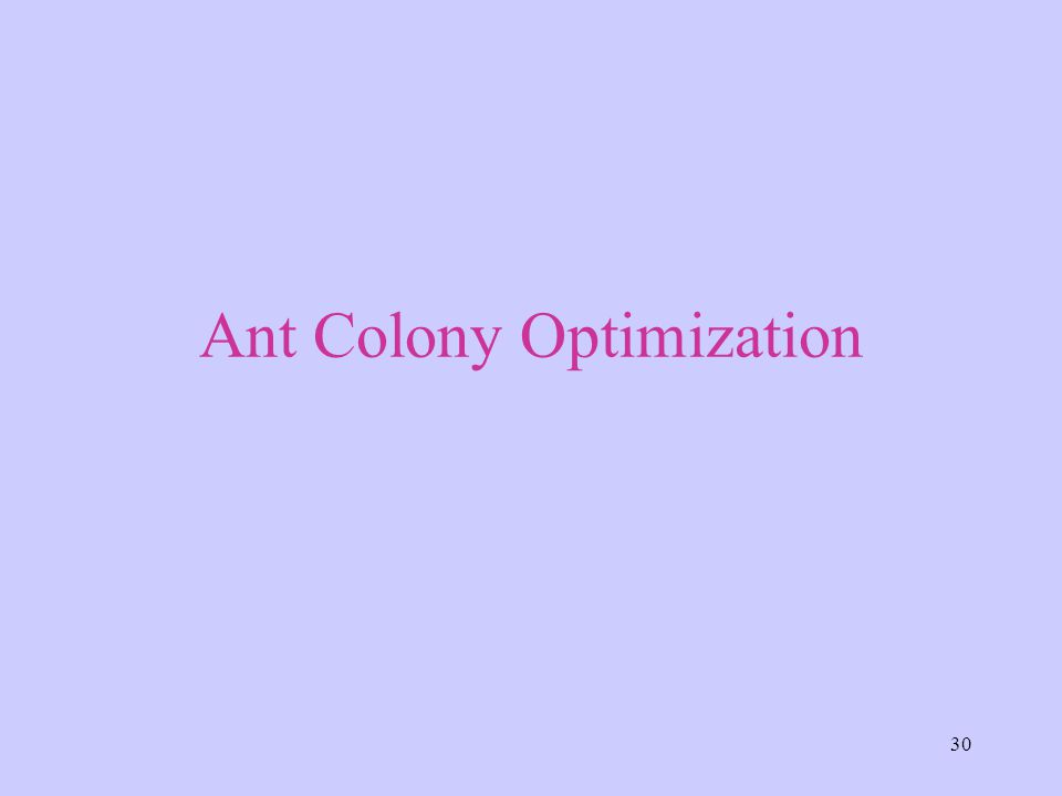30 Ant Colony Optimization
