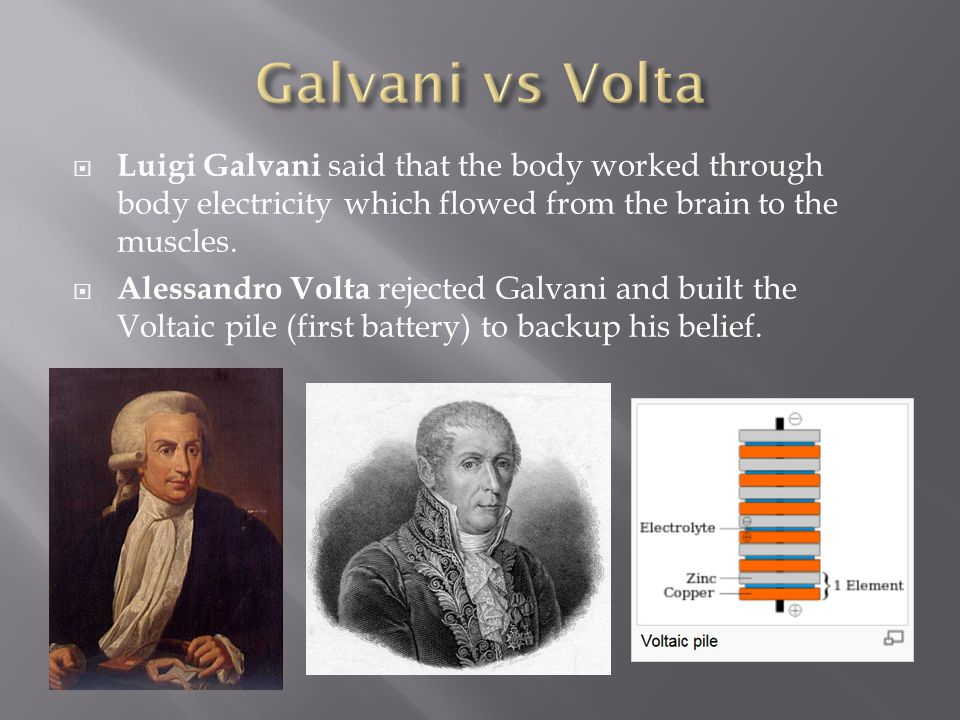  Luigi Galvani said that the body worked through body electricity which flowed from the brain to the muscles.