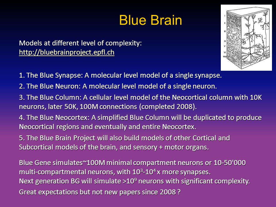 Blue Brain Models at different level of complexity: http://bluebrainproject.epfl.ch http://bluebrainproject.epfl.ch 1. The Blue Synapse: A molecular l