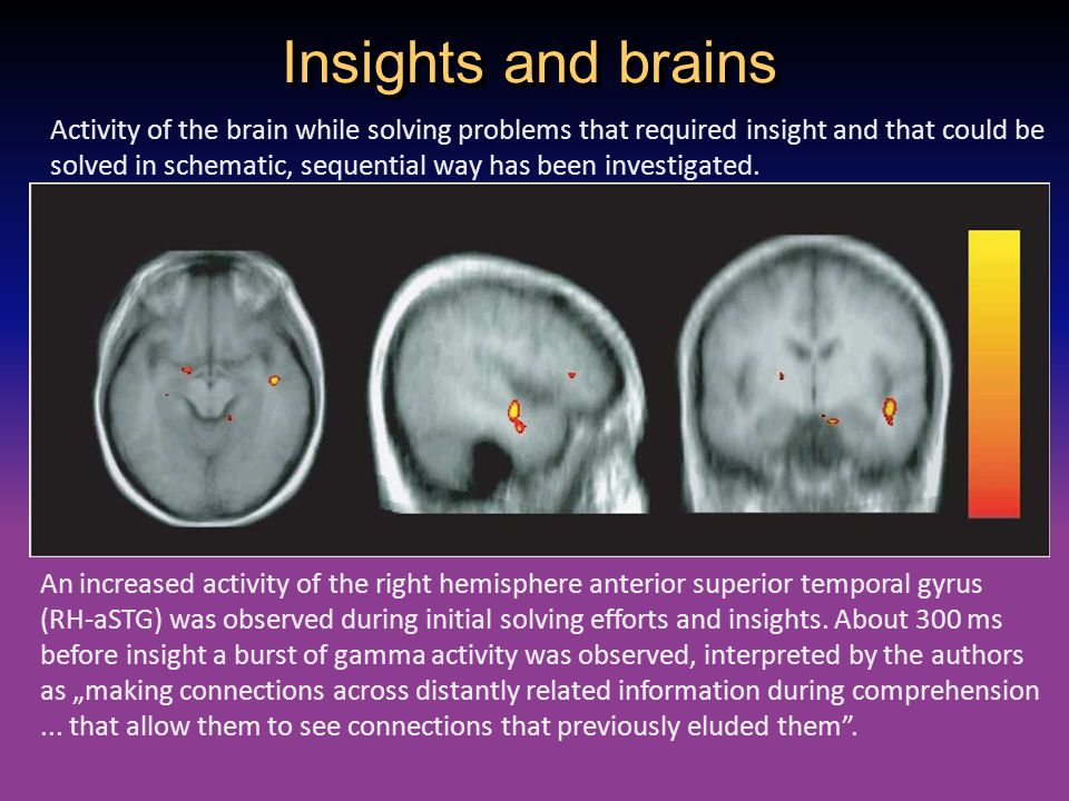 Insights and brains Activity of the brain while solving problems that required insight and that could be solved in schematic, sequential way has been