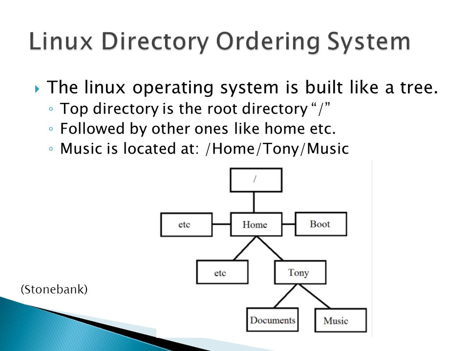  The linux operating system is built like a tree.