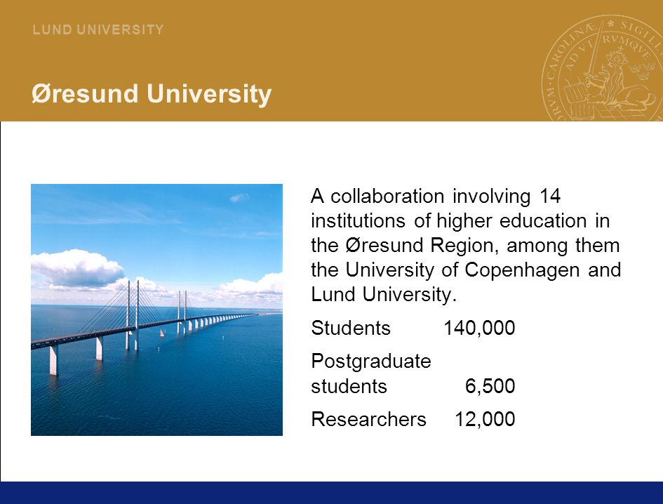 12 L U N D U N I V E R S I T Y Øresund University A collaboration involving 14 institutions of higher education in the Øresund Region, among them the University of Copenhagen and Lund University.