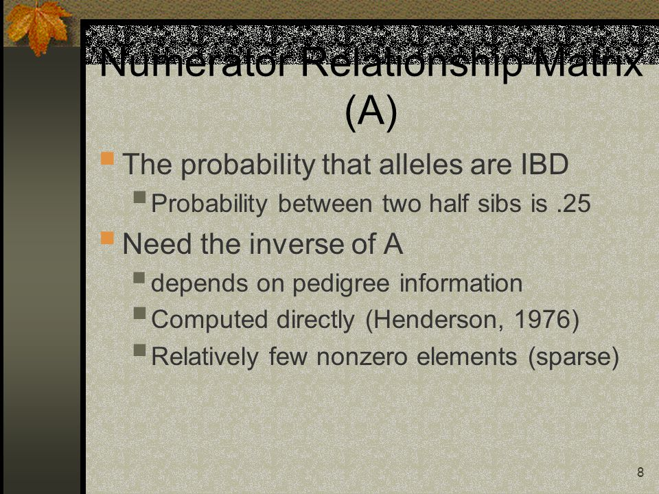 8 Numerator Relationship Matrix (A)  The probability that alleles are IBD  Probability between two half sibs is.25  Need the inverse of A  depends on pedigree information  Computed directly (Henderson, 1976)  Relatively few nonzero elements (sparse)