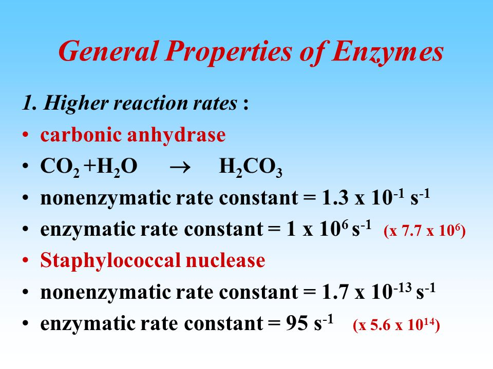 Enzyme catalyzed reactions are much faster than non-catalytic reactions. Time [Product] Enzyme catalyzed reaction Non-catalytic reaction 0 0 Reaction