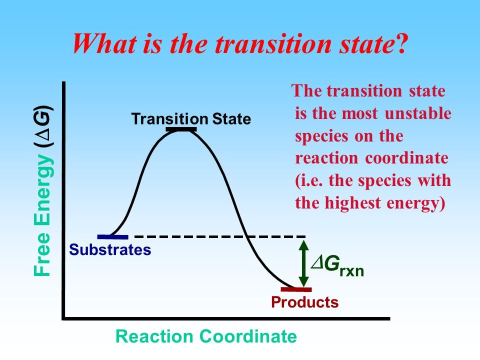 Section two: Thermodynamics and Kinetics of Enzyme-Catalyzed Reaction Yes/No Now/Later