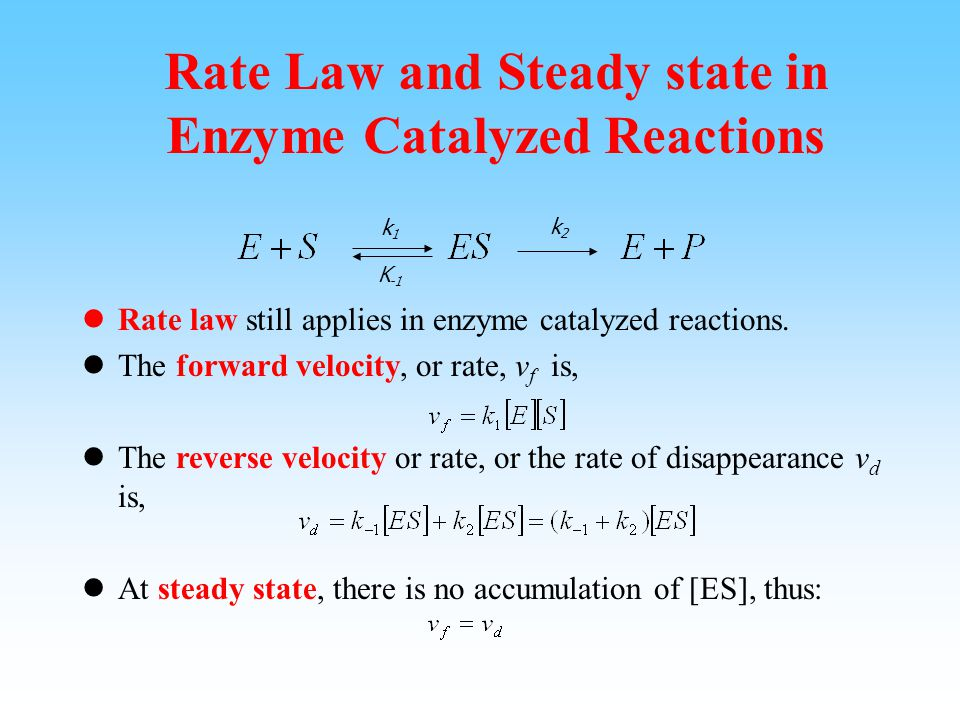 Initial Velocity Assumption In the beginning of the reaction, there is very little product, or [P] is small. So the amount of [ES] contributed by E+P