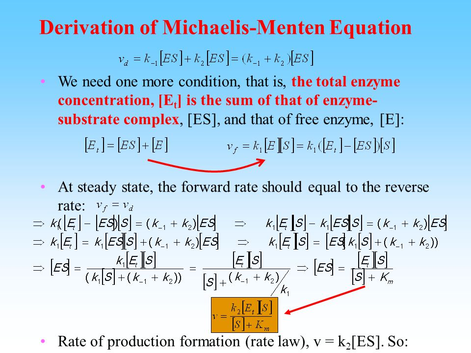 Rate Law and Steady state in Enzyme Catalyzed Reactions Rate law still applies in enzyme catalyzed reactions.