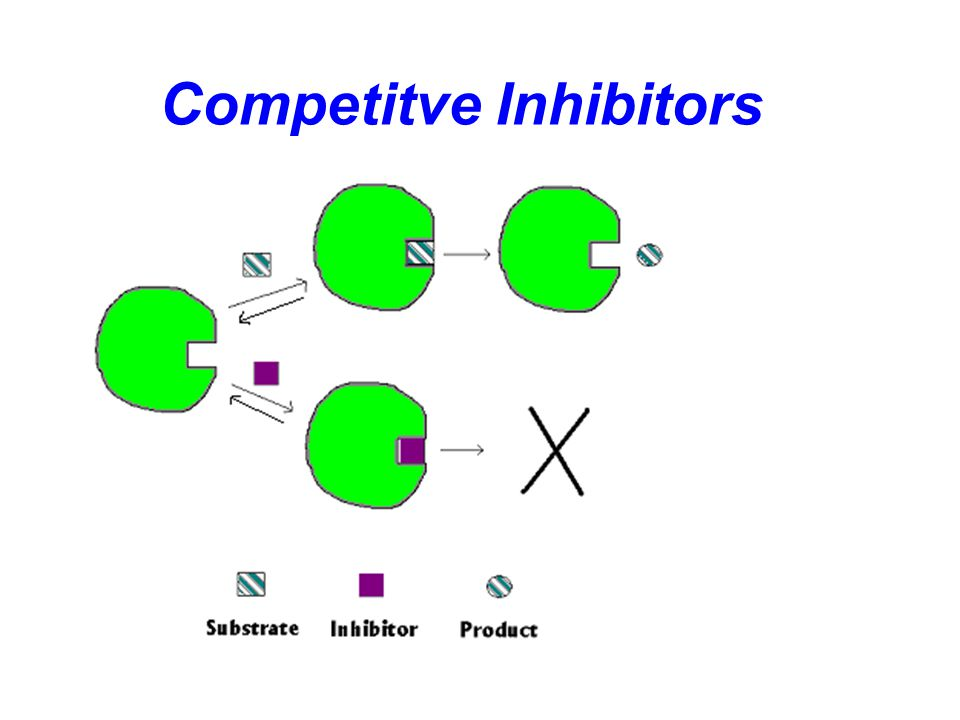 Enzyme Inhibition Reversible inhibitors associate with enzymes through non-covalent interactions. Reversible inhibitors include three kinds: Competiti