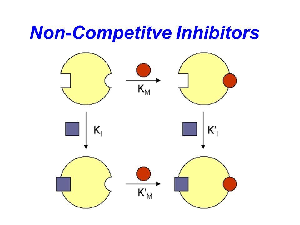 Competitive Inhibitors v [S][S] v max KmKm 1/[S] 1/v 1/v max -1/K m Slope=K m /v max k1k1 K -1 k2k2 KIKI K m increases v max unchanged +inhibitor K m (1+[I]/K I ) -1/(K m (1+[I]/K I )) Slope= K m (1+[I]/K I )/v max