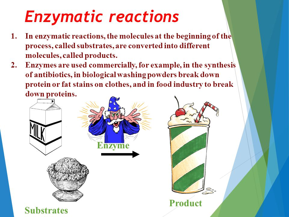 Substrates Enzyme Product Enzymatic reactions 1.In enzymatic reactions, the molecules at the beginning of the process, called substrates, are converted into different molecules, called products.