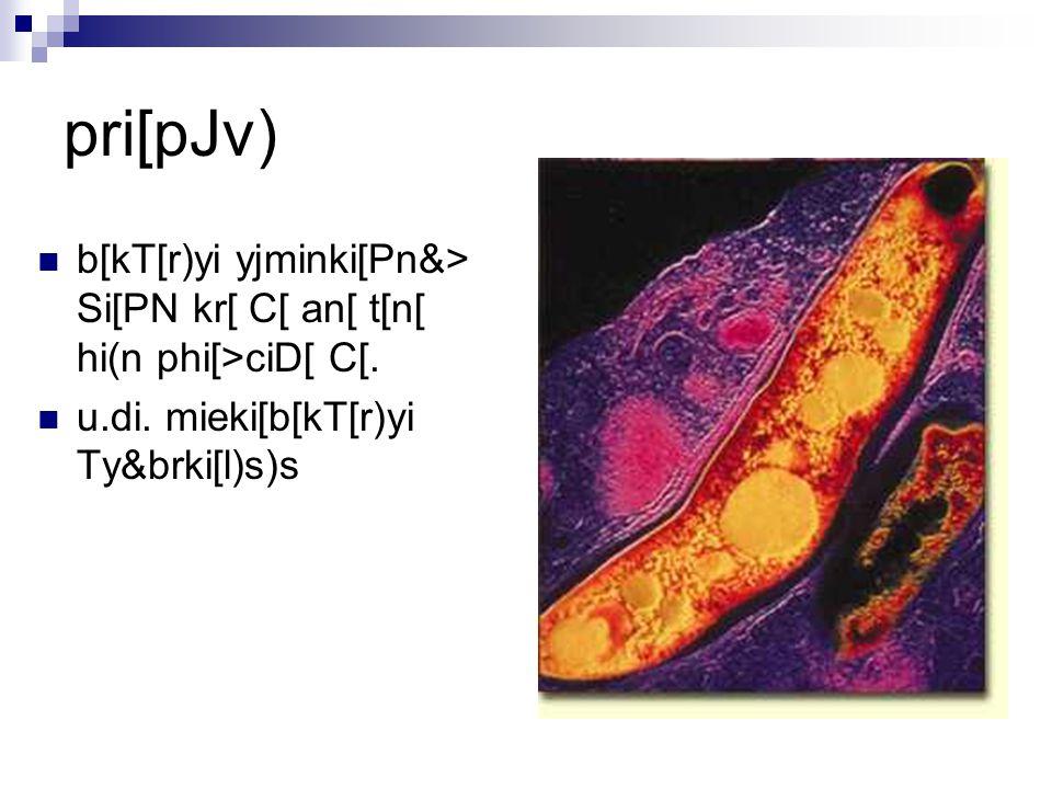 pri[pJv) b[kT[r)yi yjminki[Pn&> Si[PN kr[ C[ an[ t[n[ hi(n phi[>ciD[ C[. u.di. mieki[b[kT[r)yi Ty&brki[l)s)s