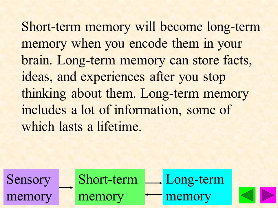 Short-term memory contains what you actively think about at any particular time.