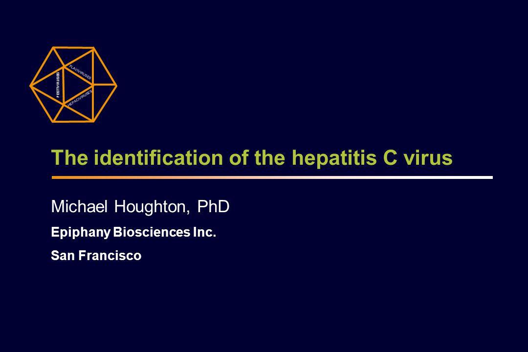 The identification of the hepatitis C virus Michael Houghton, PhD Epiphany Biosciences Inc. San Francisco PESTIVIRUSES FLAVIVIRUSES HEPACIVIRUSES
