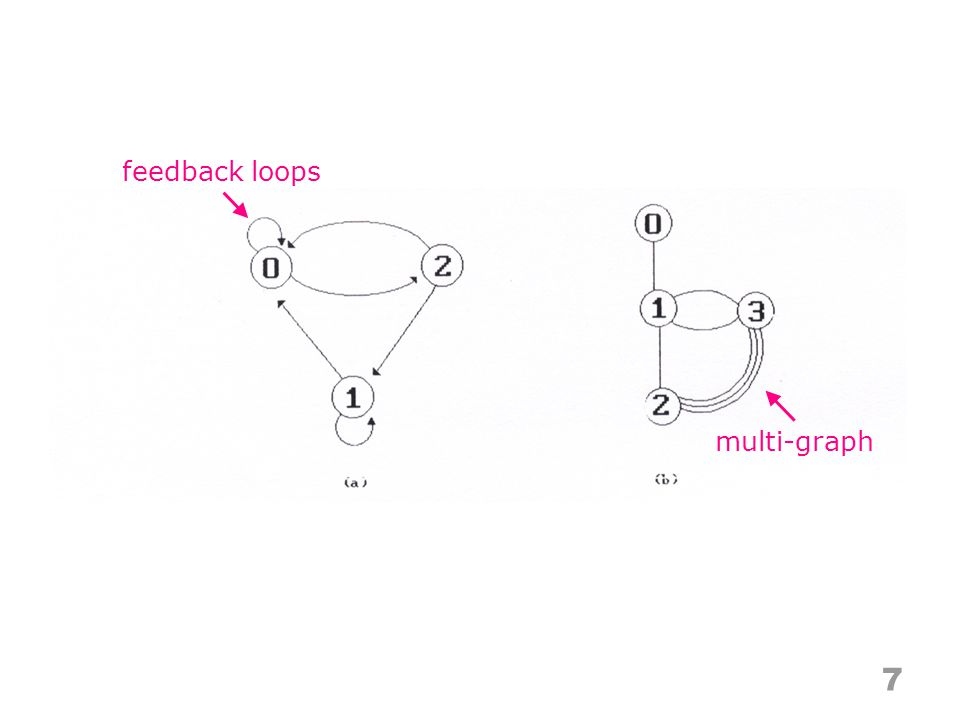 feedback loops 7 multi-graph