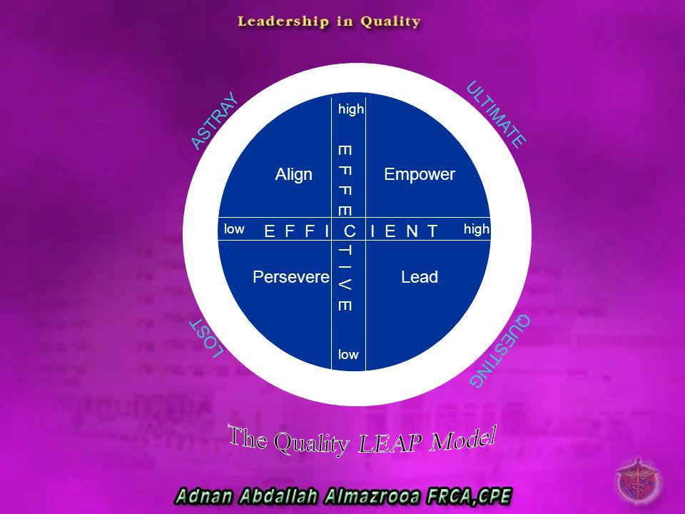 AlignEmpower PersevereLead E F F I C I E N T E F F E T I V E ASTRAY LOST ULTIMATE QUESTING high low highlow