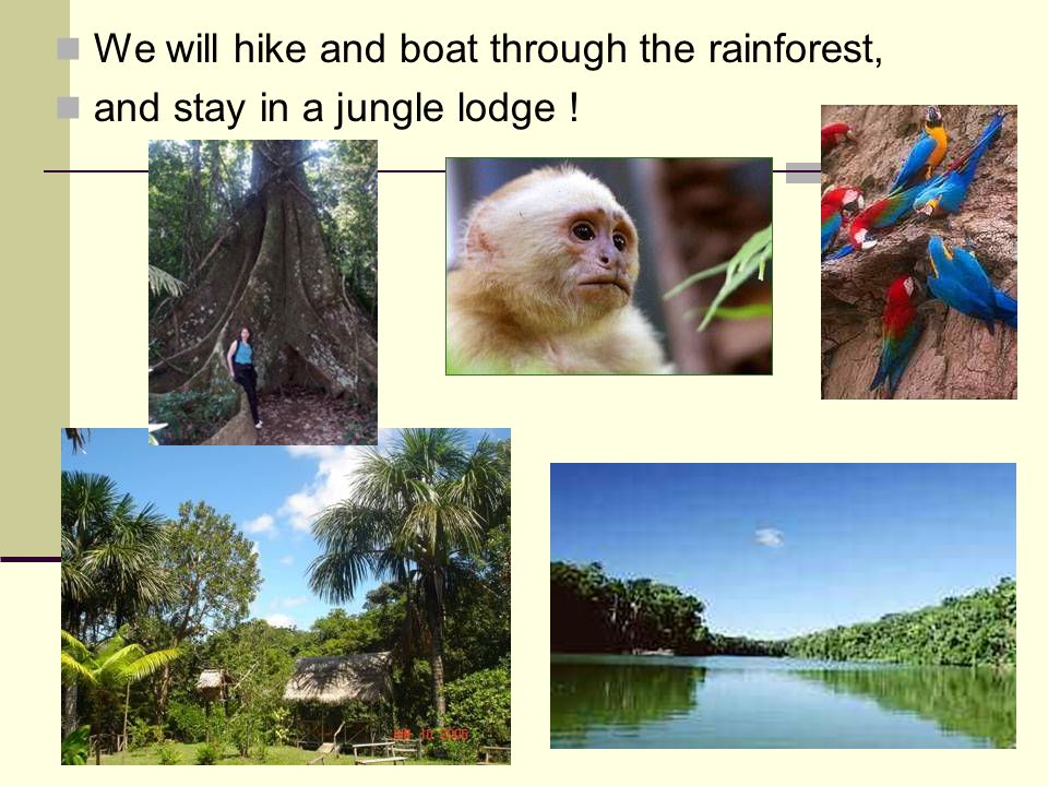 We will hike and boat through the rainforest, and stay in a jungle lodge !