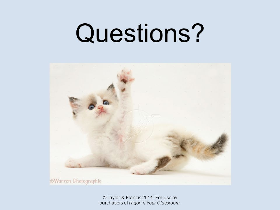 Questions © Taylor & Francis 2014. For use by purchasers of Rigor in Your Classroom.