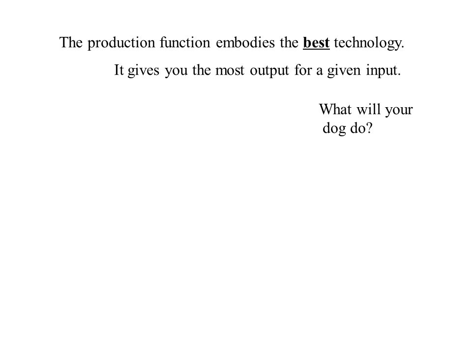 The production function embodies the best technology.