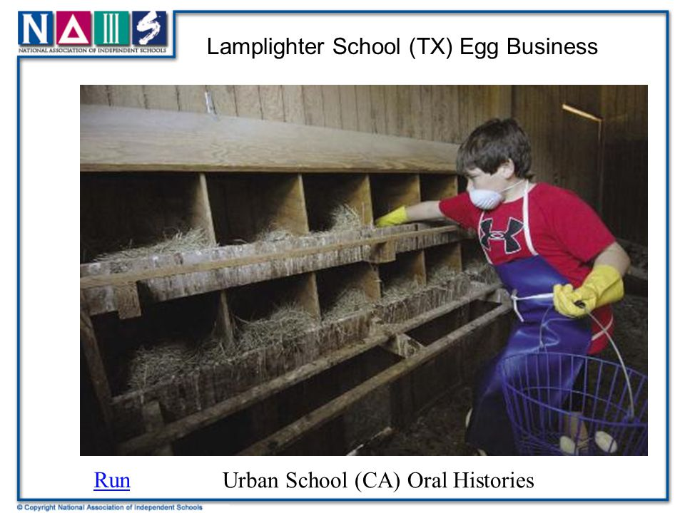 Lamplighter School (TX) Egg Business Run Urban School (CA) Oral Histories