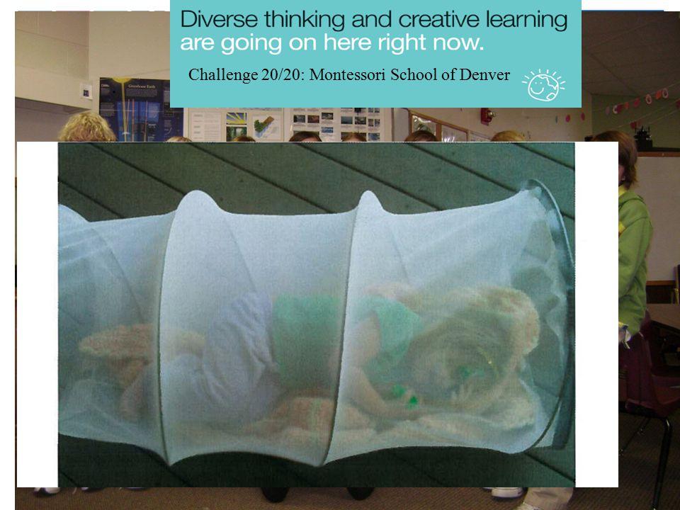 Challenge 20/20: Montessori School of Denver