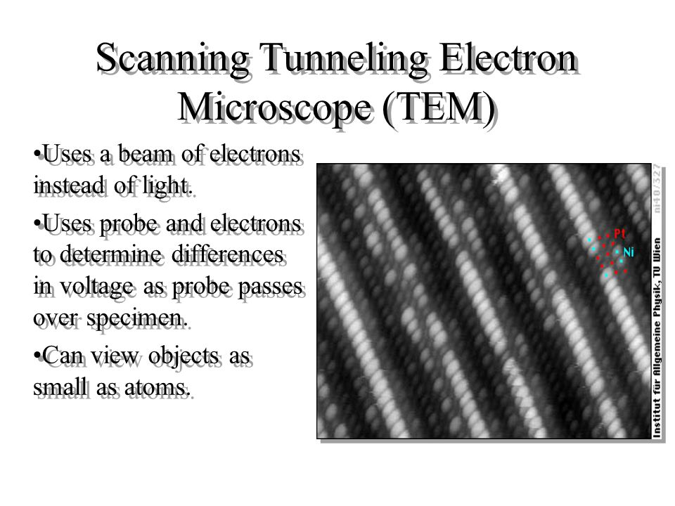 Scanning Electron Microscope (SEM) Uses a beam of electrons instead of light. The beam of electrons is passed over the specimen and are scattered. The
