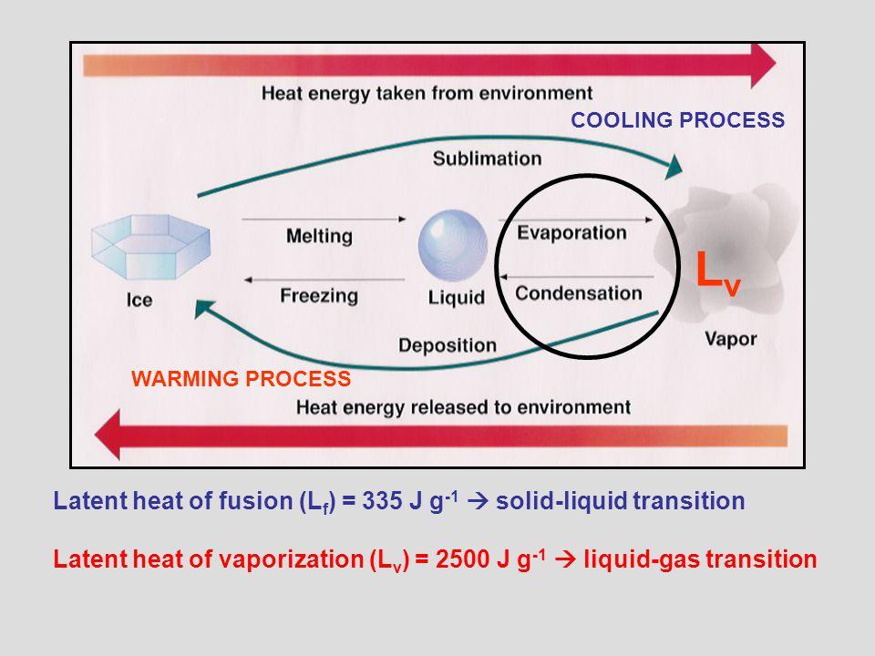 Latent heat of fusion (L f ) = 335 J g -1  solid-liquid transition Latent heat of vaporization (L v ) = 2500 J g -1  liquid-gas transition COOLING PROCESS WARMING PROCESS LvLv