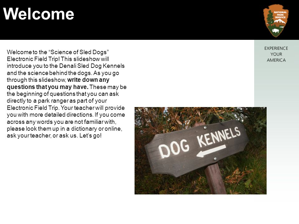 Welcome to the Science of Sled Dogs Electronic Field Trip.