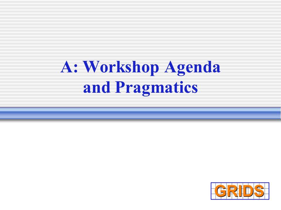 A: Workshop Agenda and Pragmatics