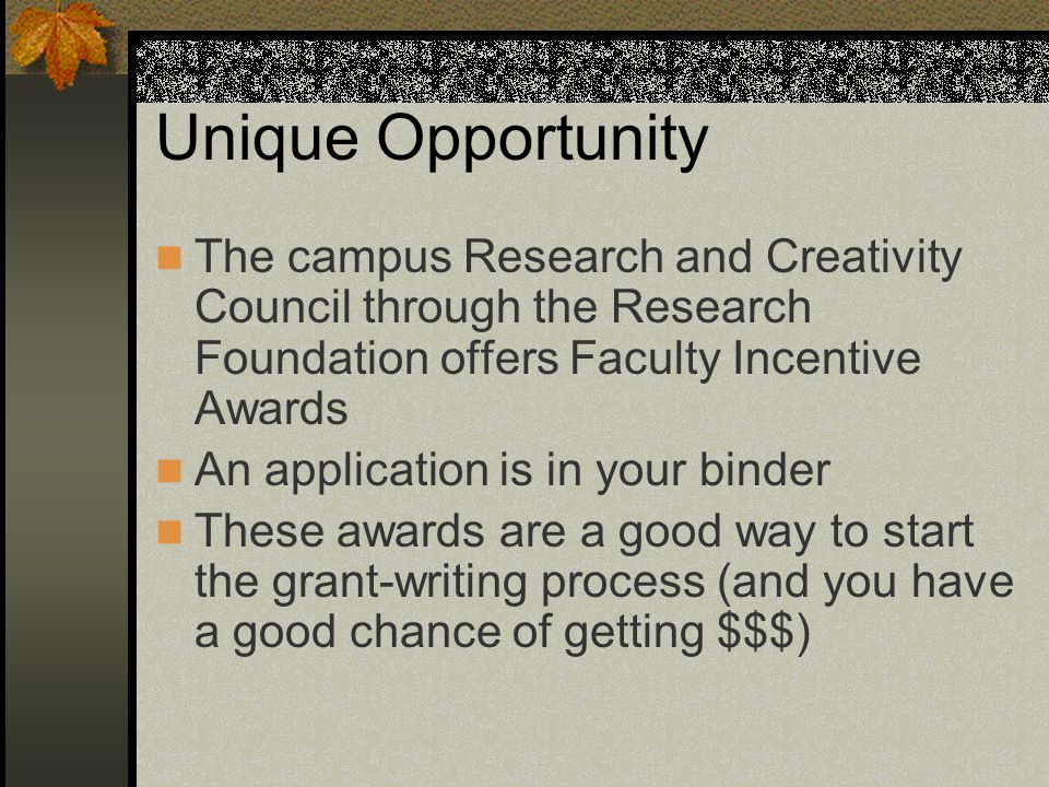 Unique Opportunity The campus Research and Creativity Council through the Research Foundation offers Faculty Incentive Awards An application is in your binder These awards are a good way to start the grant-writing process (and you have a good chance of getting $$$)