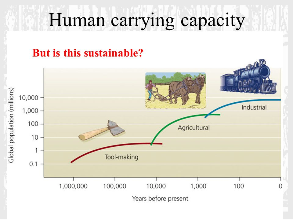 Human carrying capacity But is this sustainable?
