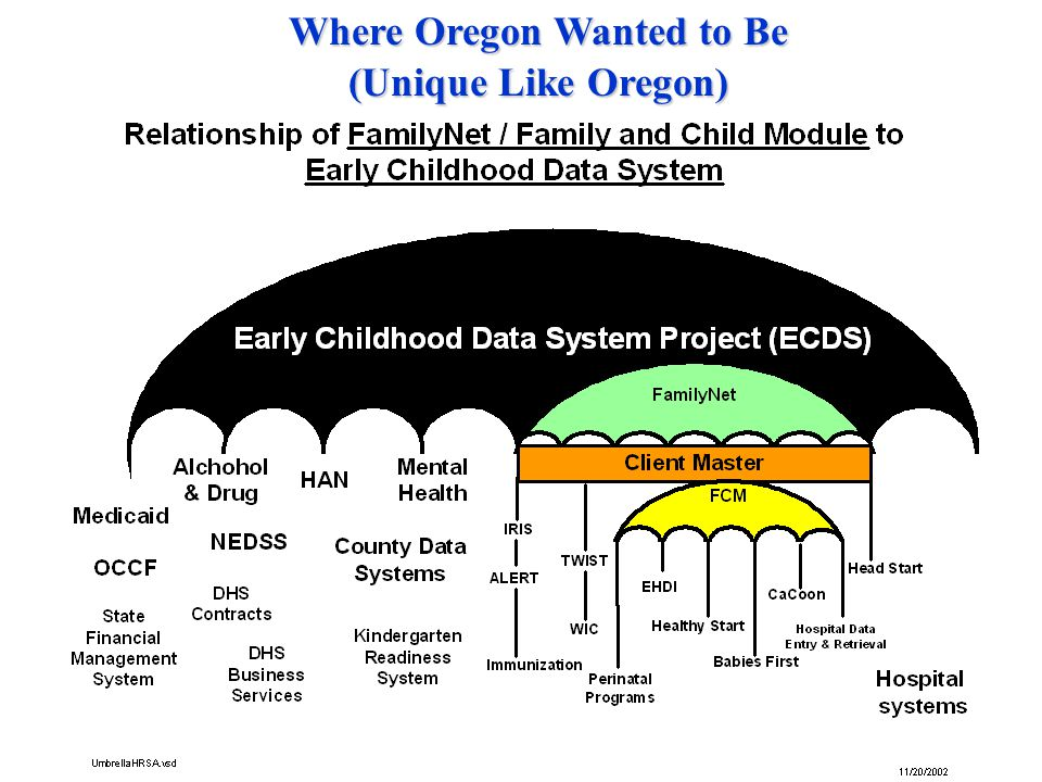 Infant Child Consolidated Data of FamilyNet Define How We'll Get There Child and Family Program or Population Pregnant or Post-Partum Woman Maternal and Child HealthImmunization WIC Authorized access by health care/public health/social service provider, program manager, analyst Solid Lines – information flow currently exists Dotted Lines – In development Immunization Registry with shot records from private and public clinics IRIS TWIST FCM