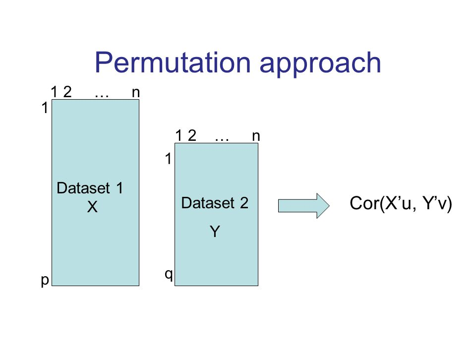 Permutation approach Dataset 1 X 1 2 … n 1p1p 1q1q Dataset 2 Y Cor(X'u, Y'v)