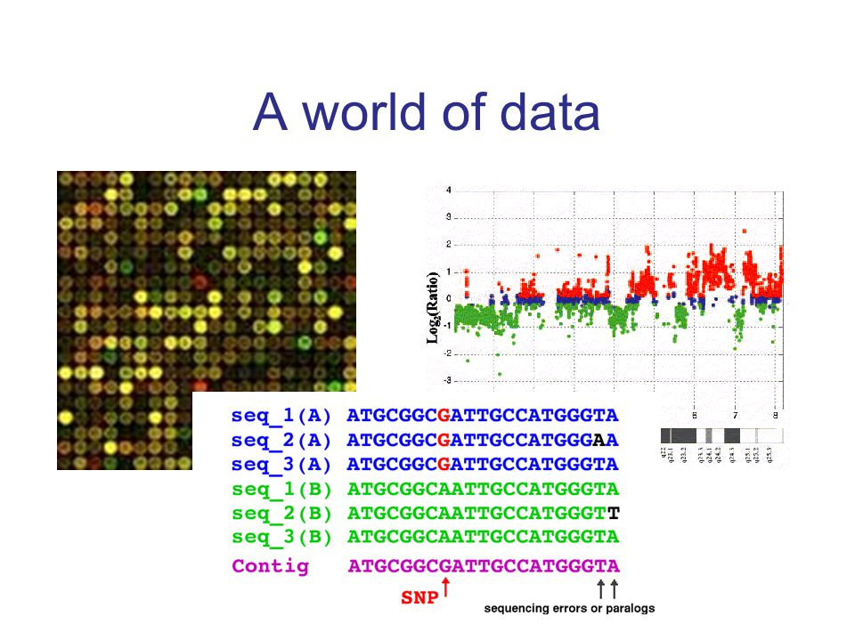 Correlate - chromosome 1