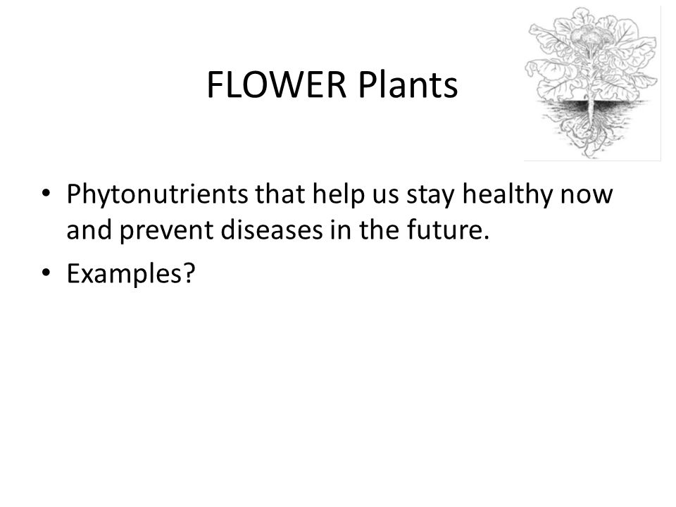 FLOWER Plants Phytonutrients that help us stay healthy now and prevent diseases in the future.