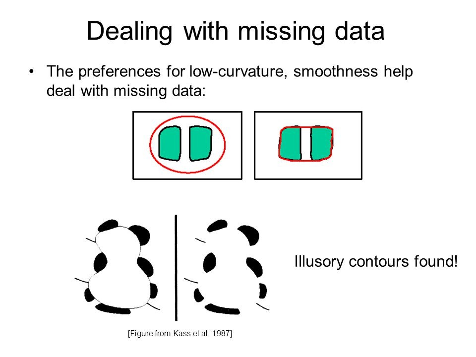 Dealing with missing data The preferences for low-curvature, smoothness help deal with missing data: [Figure from Kass et al.