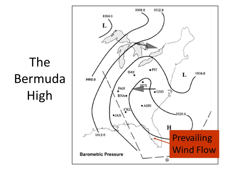 The Bermuda High Prevailing Wind Flow