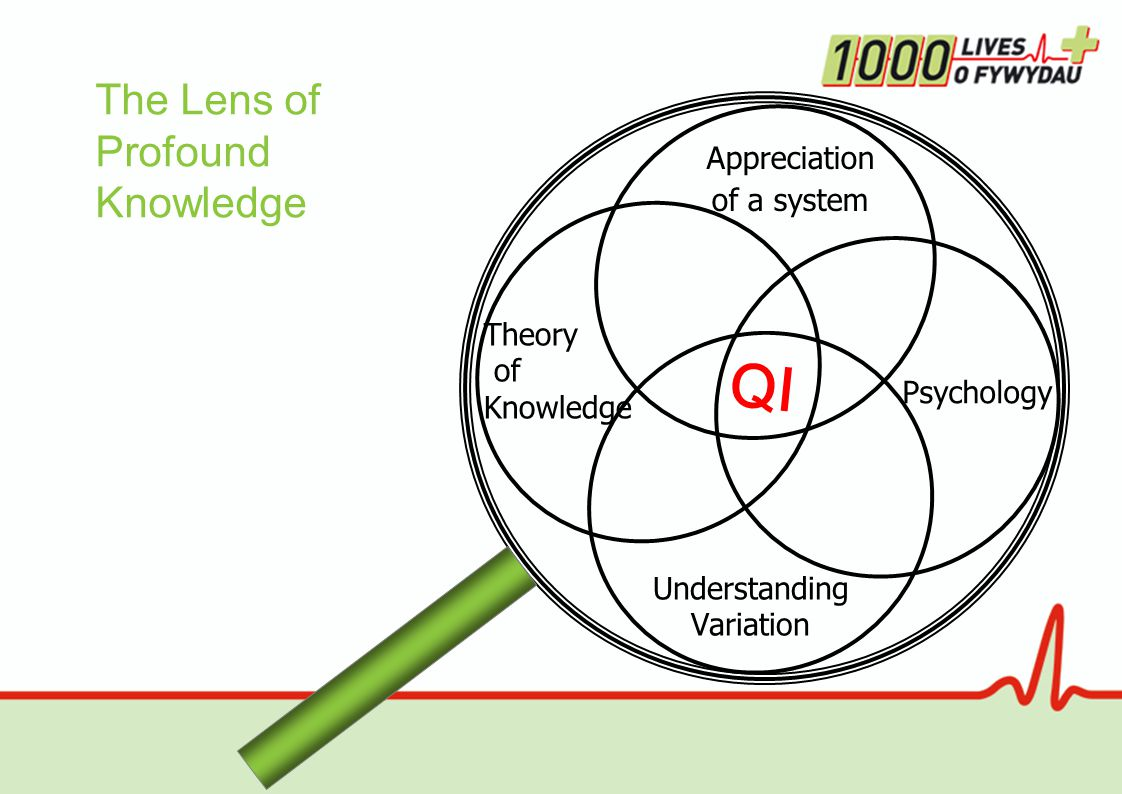 Appreciation of a system Understanding Variation Theory of Knowledge Psychology The Lens of Profound Knowledge QI