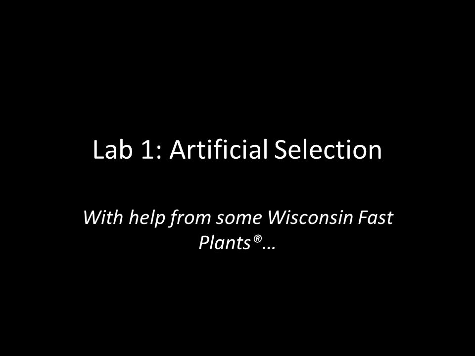 Lab 1: Artificial Selection With help from some Wisconsin Fast Plants®…