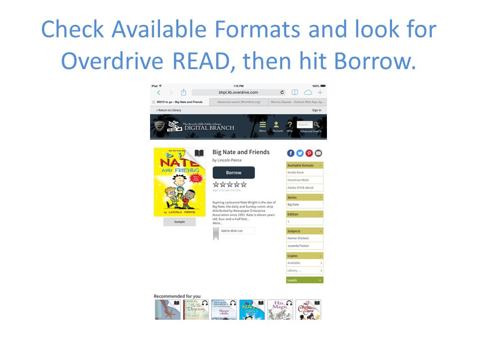 Check Available Formats and look for Overdrive READ, then hit Borrow.