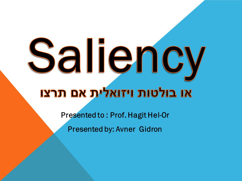 Presented by: Avner Gidron Presented to : Prof. Hagit Hel-Or