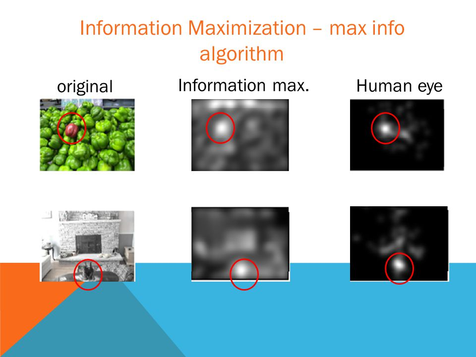 original Information max. Human eye Information Maximization – max info algorithm