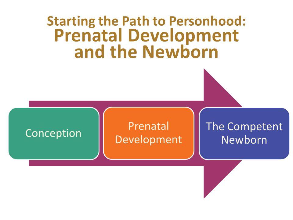 Starting the Path to Personhood: Prenatal Development and the Newborn Conception Prenatal Development The Competent Newborn