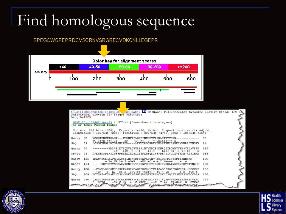 Find homologous sequence SPEGCWGPEPRDCVSCRNVSRGRECVDKCNLLEGEPR
