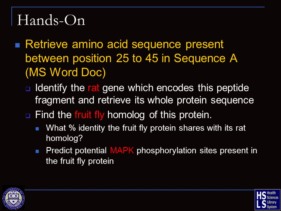 Hands-On Retrieve amino acid sequence present between position 25 to 45 in Sequence A (MS Word Doc)  Identify the rat gene which encodes this peptide fragment and retrieve its whole protein sequence  Find the fruit fly homolog of this protein.