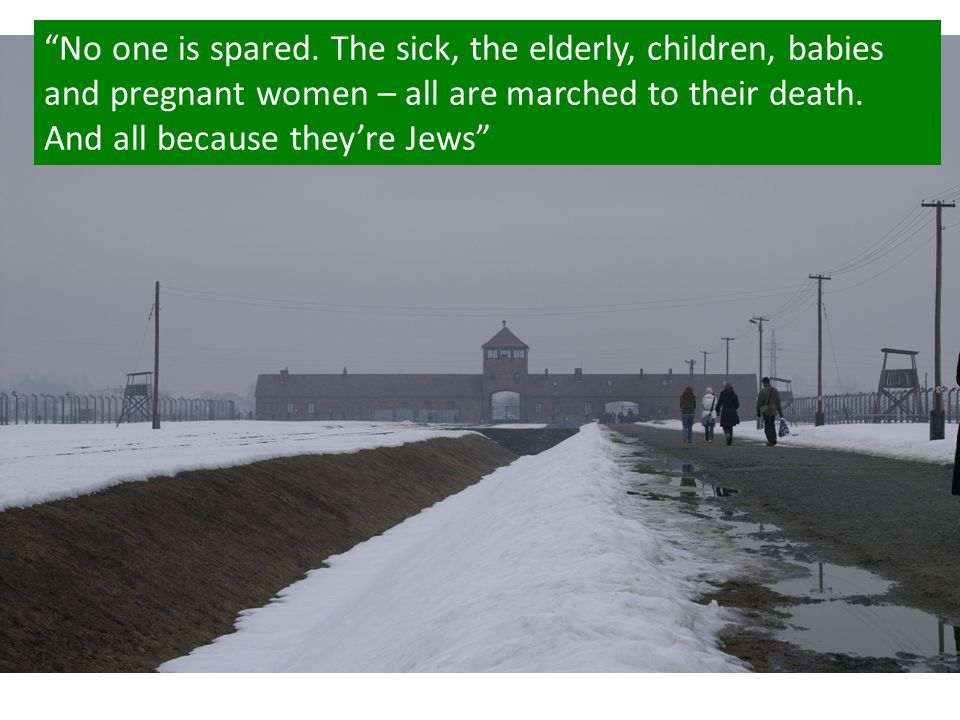 """""""No one is spared. The sick, the elderly, children, babies and pregnant women – all are marched to their death. And all because they're Jews"""""""