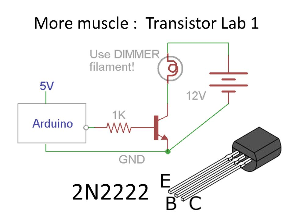 More muscle : Transistor Lab 1 2N2222