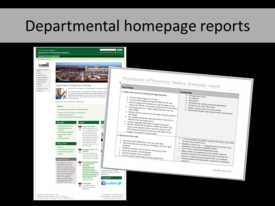 Departmental homepage reports