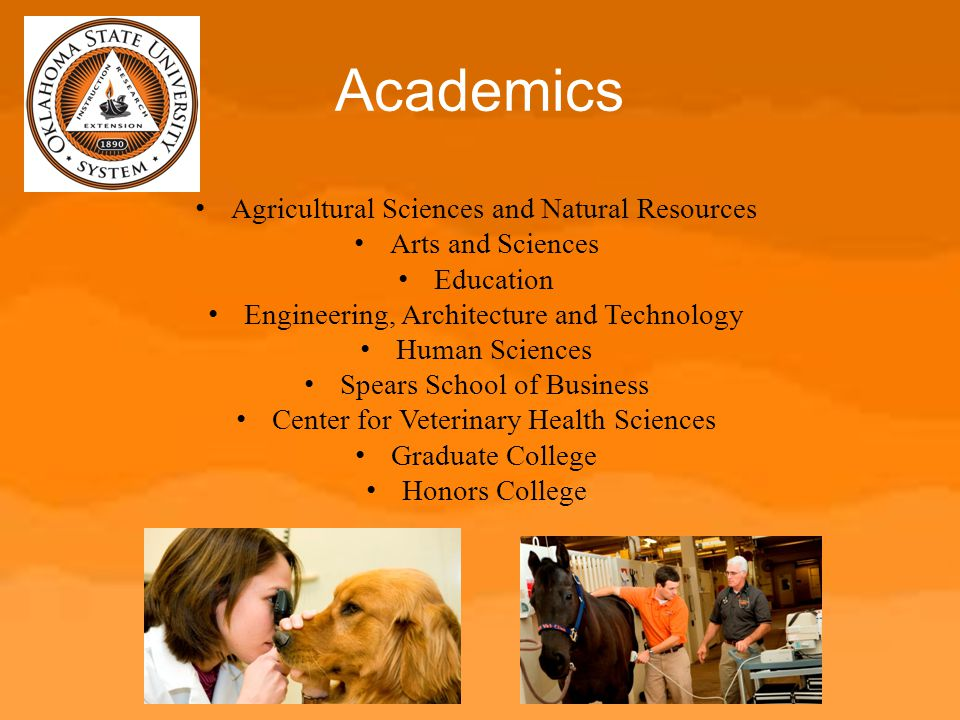 Academics Agricultural Sciences and Natural Resources Arts and Sciences Education Engineering, Architecture and Technology Human Sciences Spears Schoo