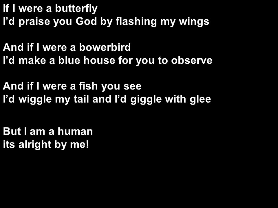 If I were a butterfly I'd praise you God by flashing my wings And if I were a bowerbird I'd make a blue house for you to observe And if I were a fish you see I'd wiggle my tail and I'd giggle with glee But I am a human its alright by me.