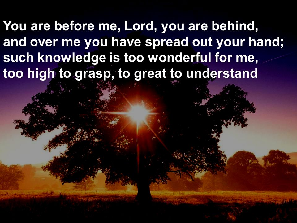 You are before me, Lord, you are behind, and over me you have spread out your hand; such knowledge is too wonderful for me, too high to grasp, to great to understand